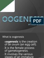 01-OOGENESIS.pptx