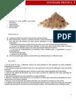 cn7_atividade_pratica_1 areias.doc