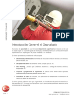 Introduccion General Proceso Granallado Cym Shot Blasting