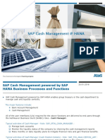 SFIN Cash Management