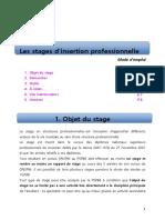 Les Stages d-insertion professionnelle.pdf