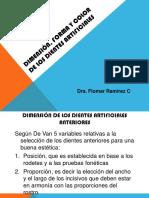 Dimensión^Jforma y color dientes artificiales 2do parcial