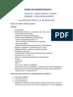 Medicina - 2017 - Doc - FISIOPATO - PRACTICA DIABETES MELLITUS - 2017 -.pdf