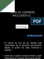 caninos inferiores retenidos.pdf