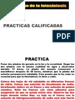 Mecanismos de La Fotosintesis PRACTICA1