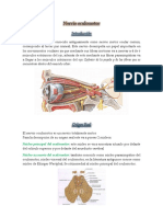 Nervio oculomotor.docx
