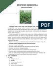 HIDROPONIK_SEDERHANA.pdf