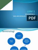 LBM 1
