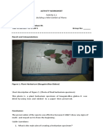 ACTIVITY-WORKSHEETcompletev2.docx