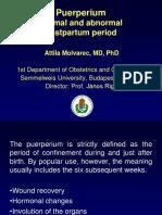 puerperium-160331192736