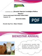 PPT DE Bienestar Animal