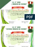 Diploma Yulma