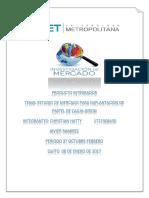 Proyecto Integrador Investigacion de Mercados Con Graficos (1)