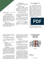 Estrategia y Estructura Organizacional