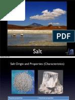 Salt Presentation