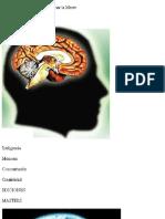 Perez Agusti Adolfo - Remedios Naturales Para Potenciar La Mente.pdf
