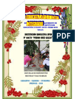 Proyecto Jardines Ecologicos- Llamo y Edinson