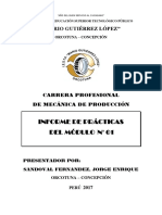 Informe de Practicas Modulares 2017 Sandoval Ultimo