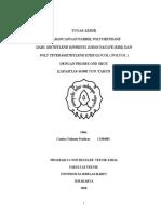 PolyURETHANE.pdf