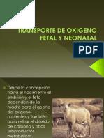 Transporte Oxígeno a Nivel Fetal Clase 14