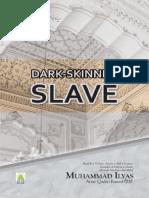 Dark Skinned Slave