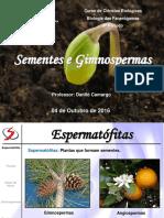 Fan07 - Gimnospermas.pdf