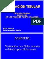 281103870-Reparacion-Tisular-Patologia.pptx