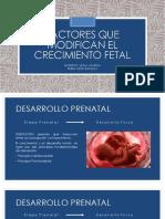 Factores Que Modifican El Crecimiento Fetal
