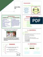 LENGUA - Semana 4 - Vicios Del Lenguaje.pdf