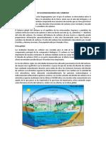 Ciclo Biogeoquimico Del Carbono y Nitrogeno