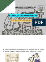 Clinica de Rumis a y b