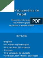 Aula Piaget Psicologia da educação.ppt