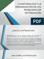 La Naturaleza y La Organización de Los Problemas de Optimizacion