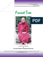 A shady forest TREE net version.pdf