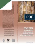 Conflictos socioambientales, derechos humanos y movimiento indígena en el Istmo de Tehuantepec