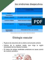 Etiología y Exploración Neurológica de Los Síndromes Disejecutivos