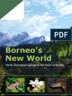 Borneo's New World