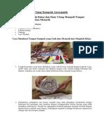 Contoh Daur Ulang Sampah Anorganik
