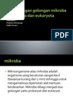 Perbandingan golongan mikroba prokaryota dan eukaryota.pptx