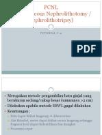 PCNL Dan Open Surgery