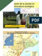 Gestió de la sanitat en olivicultura ecològica