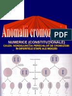 Anomalii cromozomiale numerice
