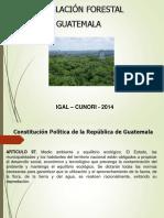 Primera Presentación Politicas Agrarias