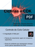 Ciclinas e CDK