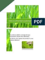 CN - Plantas Resumo