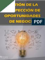 Gestión de la Prospección de Oportunidades de Negocio