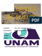 CALICATA.docx
