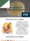 Enfermedades Del Metabolismo de Los Lípidos