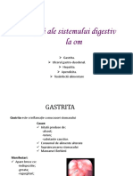 Boli Ale Sistemului Digestiv La Om
