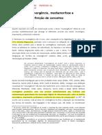 SOUSA, Jorge - Convergência Jornalística